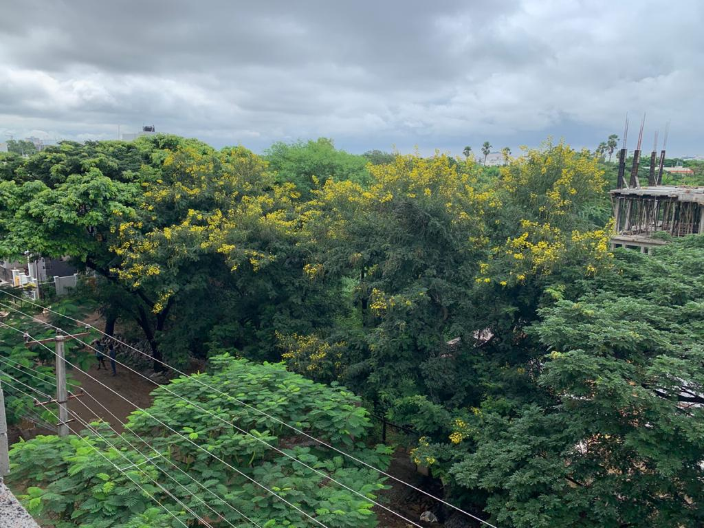 buying a 3 BHK flat in greenery locality
